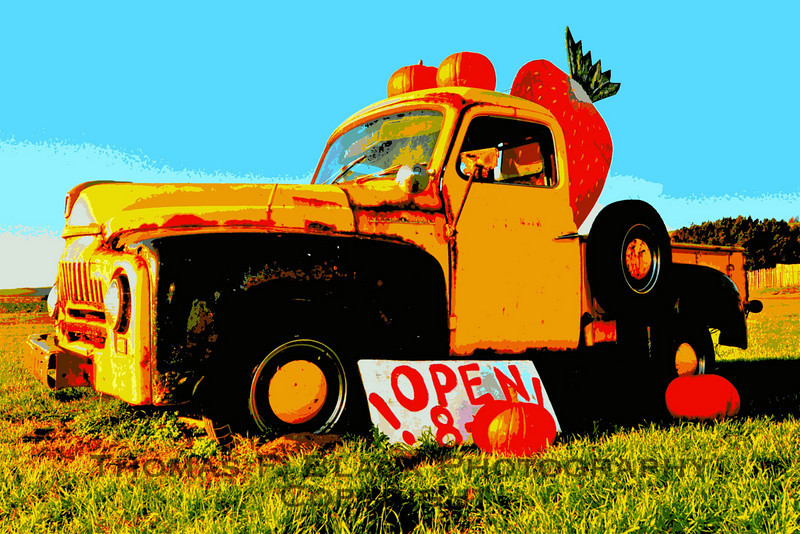 Early 1950s International Harvester pickup used as advertising marquee of organic berry farm, Hwy. 1, CA. [UFP 030410]