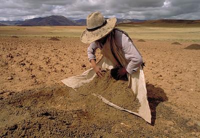 Preparing the Soil, 1995.
