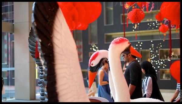 130203 CNY Photowalk 14