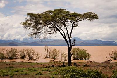 Lake Chamo (the Pink Lake) of Ethiopia
