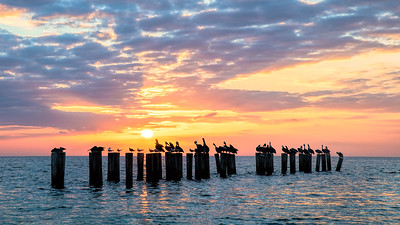 Naples Beach Sunset At Pilings