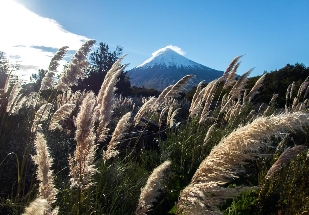 Wandering Osorno