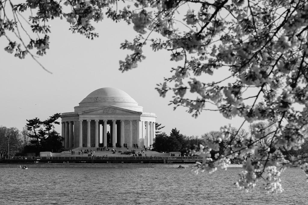 National Cherry Blossom Festival: Jefferon Memorial