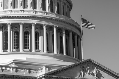 Capitol Dome - B&W