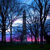Washington Monument at Sunset - Washington DC
