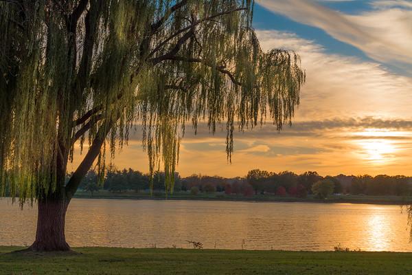 Potomac Fall 2016