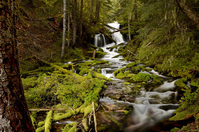 Lower Big Spring Creek Falls