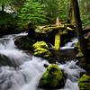 Upper Panther Creek Falls