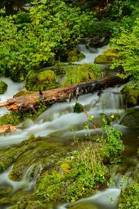 Big Spring Creek, Washington