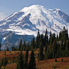 Majestic Mt. Rainier and fall color.  Mt. Rainier National Park.