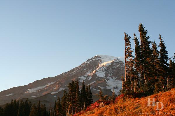 Mt. Rainier in the fall. National Park in Washington.