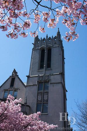 University of Washington in the spring.