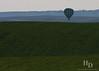 Walla Walla balloon stampedee