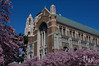 University of Washington Suzzallo Library in the spring.