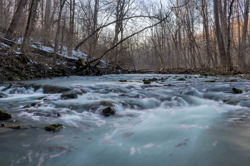 The Yellow Springs Creek