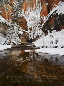 Winter Scene At Subway, Zion National Park