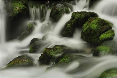 Kamniška Bistrica spring
