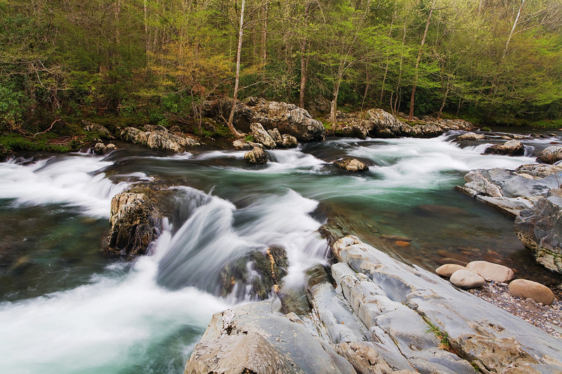 Greenbriar District of the Great Smoky Mountains National Park, TN