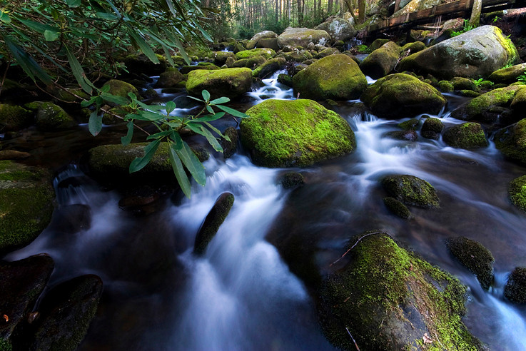 Roaring Fork Great Smoky Mountains National Park, TN