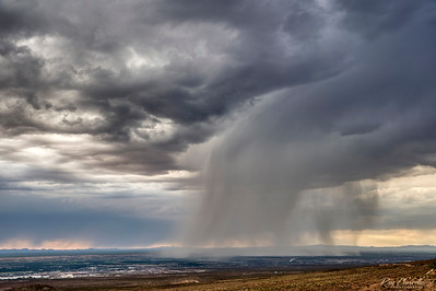 Downpour on Anthony, Texas