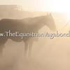 Dust Storm V