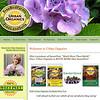 Urban Organics - Web Page