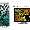 "Client:  Backscatter ::<br /> Role: Designer & Illustrator<br /> <br /> Line of clothing inspired by local marine fauna of Monterey Bay.<br /> <br />  <a href=""http://www.backscatter.com"">http://www.backscatter.com</a>"