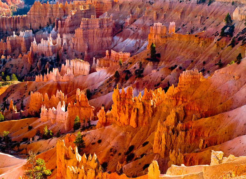 Bryce Canyon: Queen's Garden/Navajo Trail