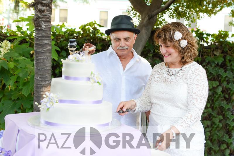 20150619 Jan and Dave Wedding-1145
