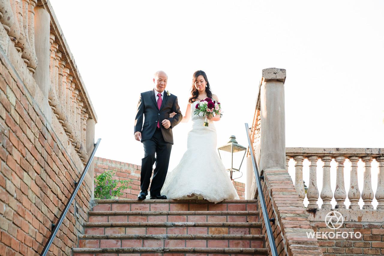 Wedding of Diane and Steve