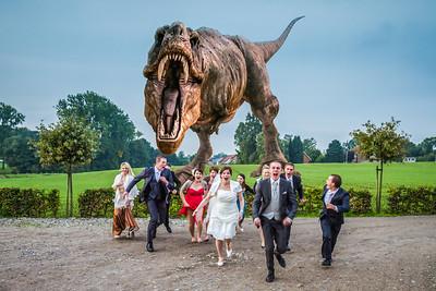 Dino Wedding