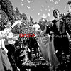 0193-WeddingPortFolio 2015