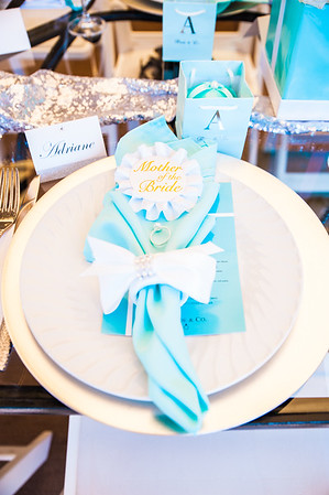 20160403 - Anne Correa Bridal Shower-5