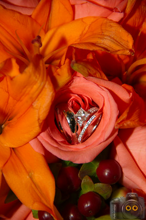 Wedding Photo of Wedding Rings in a Flower.