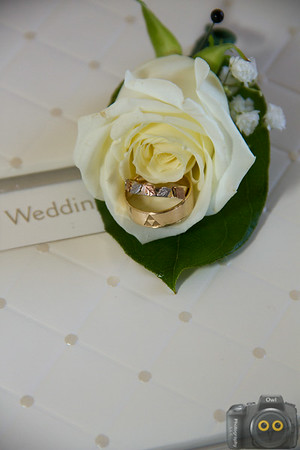 Wedding Photo of the Wedding Rings inside of a flower