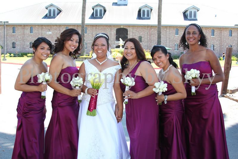 The Bride & Bridesmaids