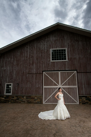 Alyeska Kochanek & Richard Martinez<br /> Wedding Day - Portrait<br /> County Line Orchard - Hobart, Indiana
