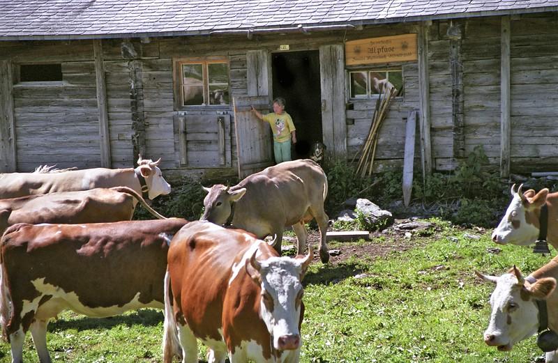 Farm near Kleine Scheidegg