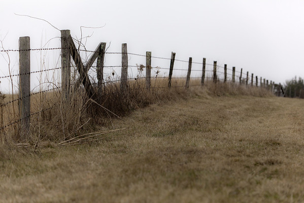 Eastern Barriers - Blue Ridge Parkway, North Carolina (Photo: Kelly J. Owen)