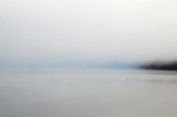 """First Flight""  Chatuge Lake Hiawassee, Georgia (Photo: Kelly J. Owen)"