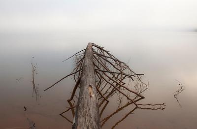 """""""Sublimely Submerged"""" Chatuge Lake Hiawassee, Georgia (Photo: Kelly J. Owen)"""