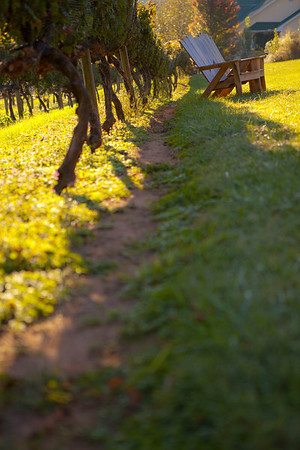 """End-of-Day"" Cane Creek Vineyards (Photo: Kelly J. Owen)"