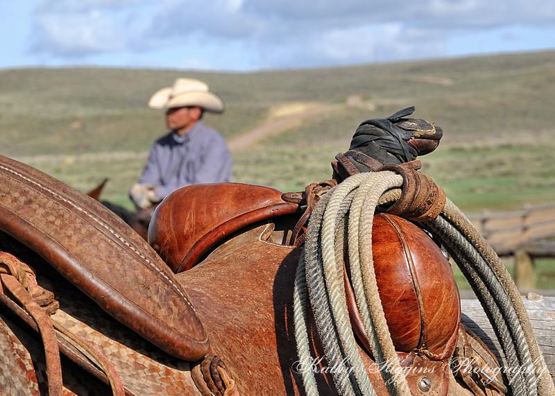 Western Lifestyle