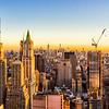 New  York City<br>New York<br>2015