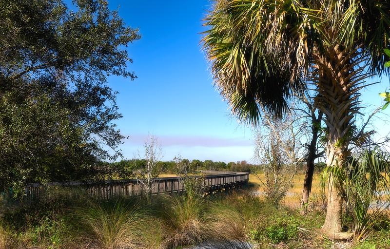 Wellington Environmental Preserve