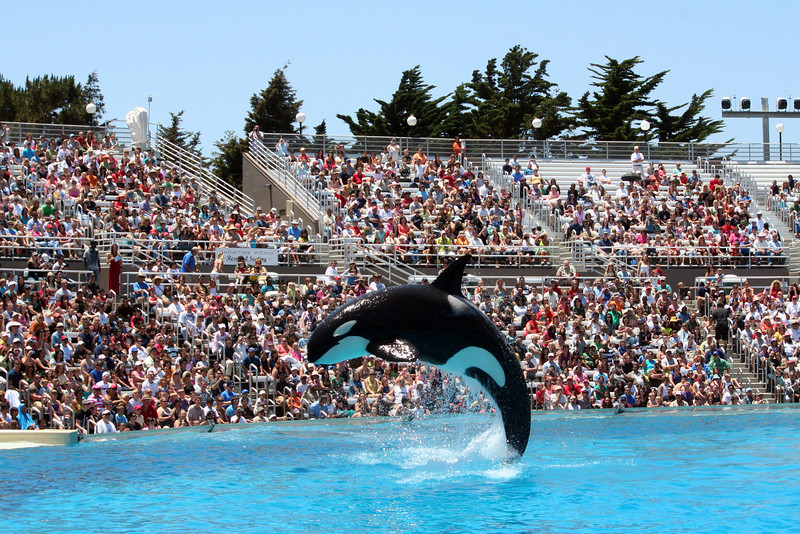 San Diego Sea World, June '09