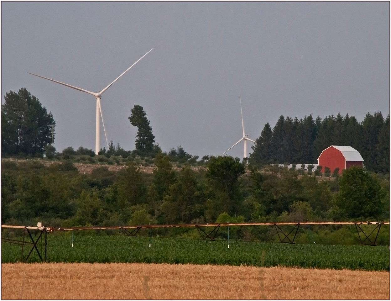 Wind Turbines In Farmland 01