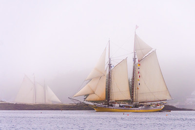 Windjammers in Fog