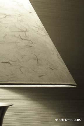 lamp5551