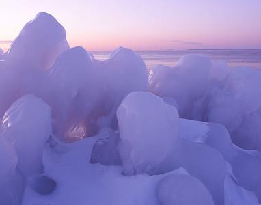 Ice Creatures 1